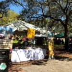 KD's NOLA TREATS at the Audubon Zoo Soul Fest